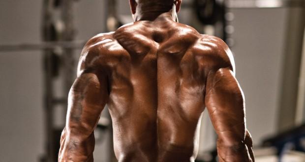 5 Exercícios para Trapézio - Treino Intenso para o Músculo Trapézio!