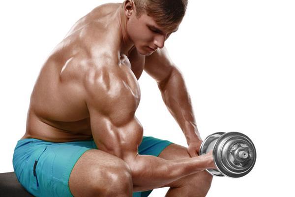 Exercícios para Bíceps com Halteres