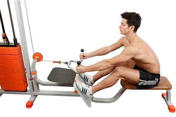 Remada: 7 Exercícios para Ombros e Costas