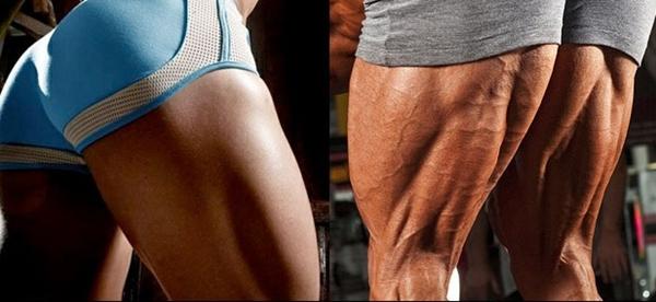 Exercícios para Posterior de Coxa: Os Melhores para os Músculos!